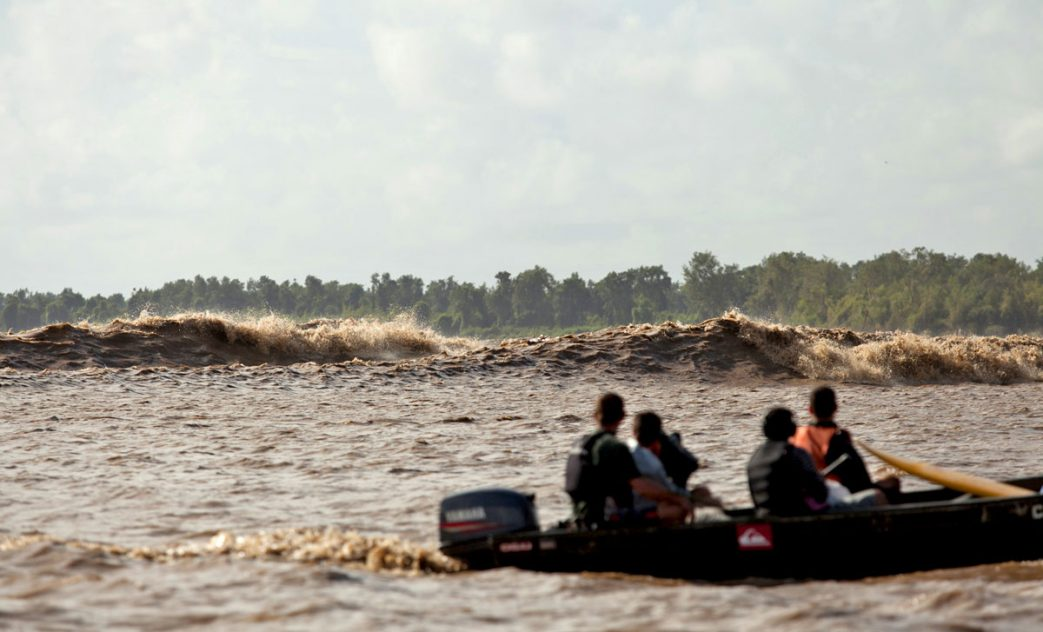 Pororoca do Rio Araguari, Amapá, AP, Surf na Amazônia. Foto: André Portugal