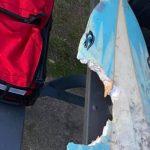Prancha de Joe Hoffman depois de mordida de tubarão em Crescent Head, Austrália. Foto: Reprodução